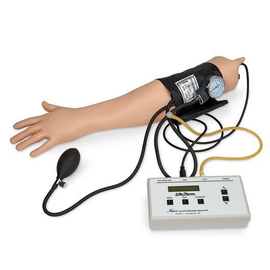 Simulateur Bras pour tension artérielle 3B Scientific W44085