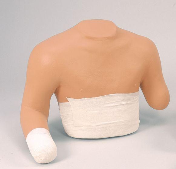 Simulateur de Bandage Zone Supérieure Erler Zimmer R10022