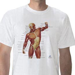 T-Shirt anatomique, Musculature, XL W41013