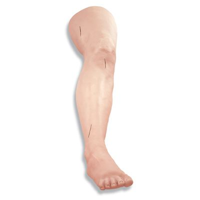 Jambe pour l'exercice de sutures chirurgicales W44230