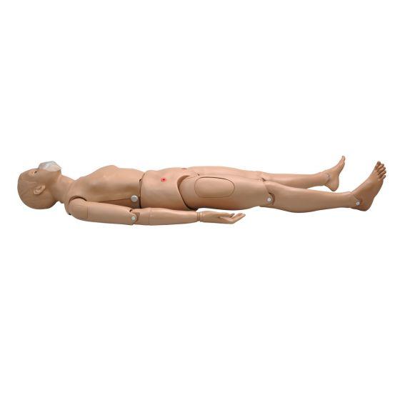 Simulateur corps intégral avec des régions veineuses CPR SIMON BLS 3B Scientific W45115 1017559