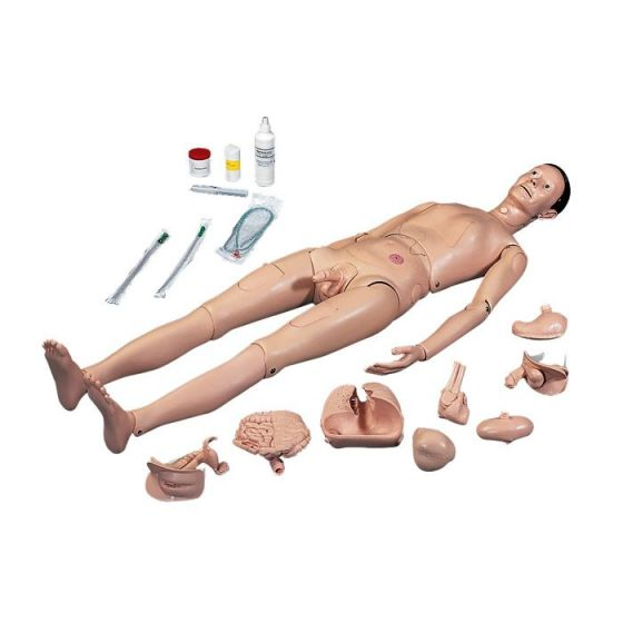Mannequin de soins 3B Scientific P10