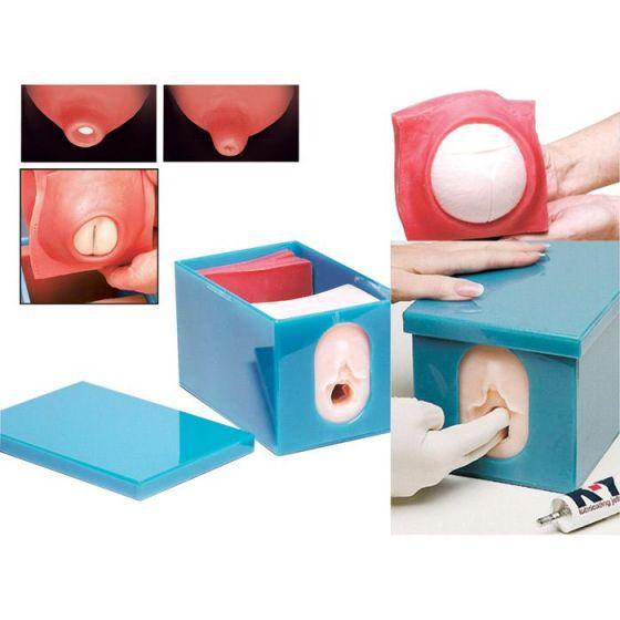 Monitorage fœtal et kit de modèle de progression du travail W43045