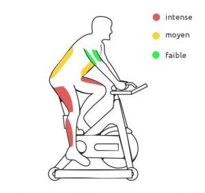 bonne position vélo